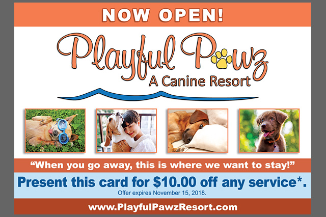Playful Pawz Canine Resort Postcard by Pelland Advertising